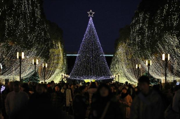 7.7Personas-junto-a-árboles-de-Navidad-que-iluminan-a-Tokyo-Japón.