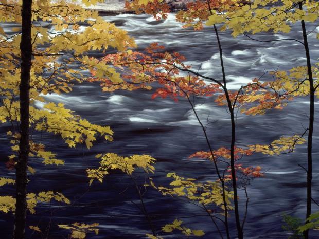 AutumnColorsaRushingRiver