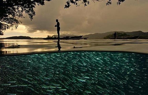 espectaculares-fotos-sobre-y-bajo-el-agua_13_thumb