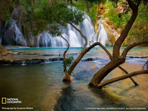 havasu-creek-waterfall