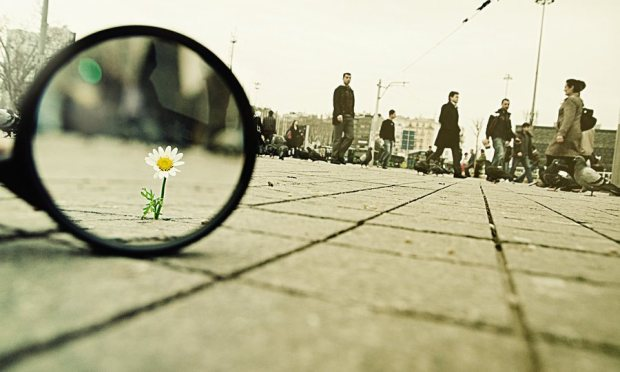 98__magnifying_glass____vii_by_salihagir