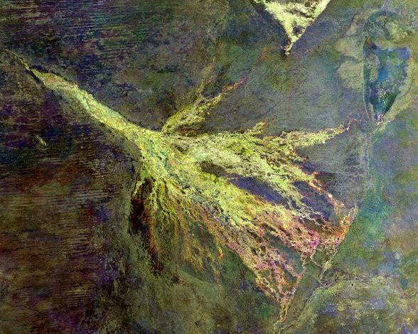 el-delta-del-rio-okavango-3960