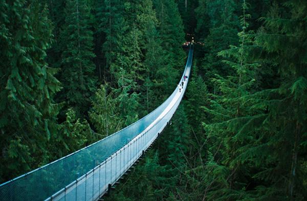 capilano-suspension-bridge-vancouver-enpundit-3